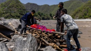 হরিয়ানায় ব্ল্যাক ফাঙ্গাসে ৫০ জনের মৃত্যু, চিকিৎসাধীন ৬৫০